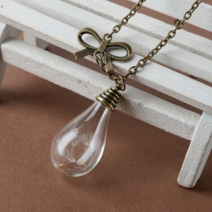 Bow Dandelion Dried Flower Glass Bottle Pendant Bow Dandelion