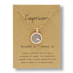 Fashion Rose Gold Charm Necklace Daytime Twelve Constellation Paper Card Alloy Pendant Necklace Jewelry Capricorn