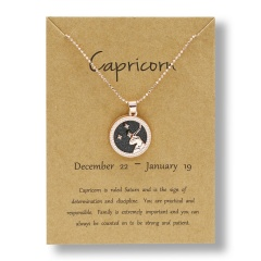 Fashion Rose Gold Charm Necklace Black Night Twelve Constellation Paper Card Alloy Necklace Capricorn