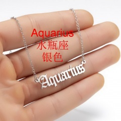 Stainless Steel 12 Constellation Necklace Clavicle Chain Aquarius