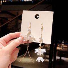 Fashion Crystal Love Long Tassel Earrings ER20Y0419