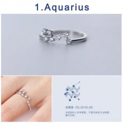 12 Constellation Silver Opening Adjustable Diamond Rings Aquarius