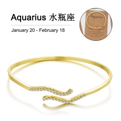Gold 12 Constellation Diamond Open Bracelet Bangle with Card Aquarius