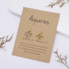 Color rhinestone symbol version twelve constellation paper card earrings Aquarius
